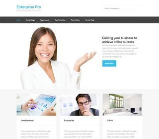 Enterprise Pro Business theme