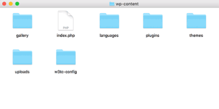 Inside wp-content folder of a typical WordPress blog