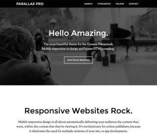 Parallax Pro Theme