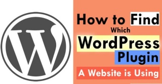 Find What WordPress Plugin A Website is Using