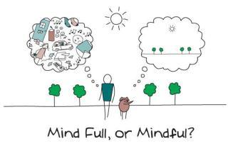 Meditate or Mindful