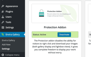 Image theft protection addon in Envira Gallery plugin for WordPress