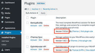 Finding a plugin's version number